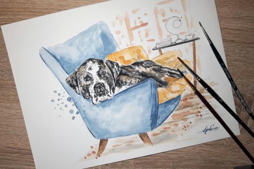 Chien dans son fauteuil dessin et aquarelle